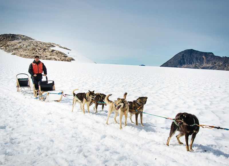 !Dogsled